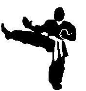 kung-fu kick 18