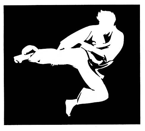 silhouette kicker